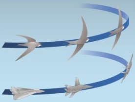 Bird Flight Elliptical Wings | RM.